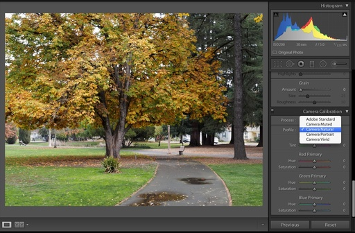 color-profiles-lightroom-5-pt-3.jpg