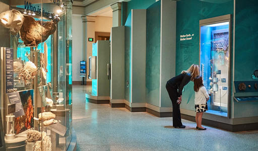 PB175634-Washington-DC-History-Museum.jpg